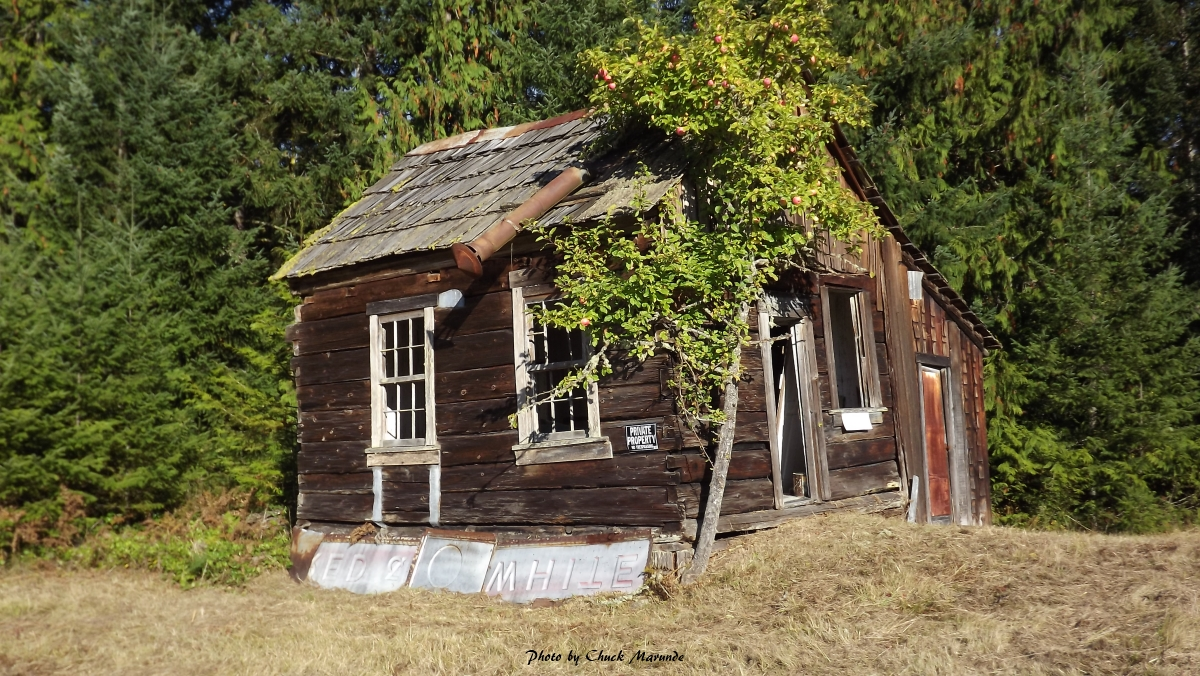 Pin small old house in need of repair puckett for This old housse