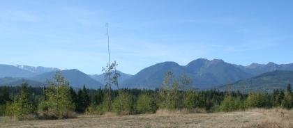 sequim mountain view